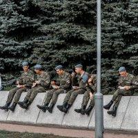Война войной а обед по распорядку... :: dmitriy-vdv