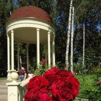 Розы у ротонды :: Ирина