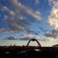 Москва. Живописный мост. :: Ольга Русанова (olg-rusanowa2010)