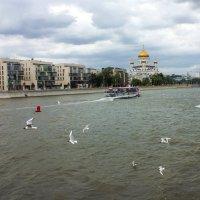 Москва-река :: Елена Аксамит
