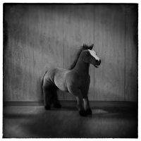 horse :: Андрей Пигалов