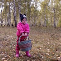 Во сколько грибочков насобирала! :: Светлана Рябова-Шатунова
