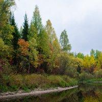 Осень :: Евгений Ветров