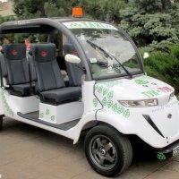 Эко-такси :: Нина Бутко