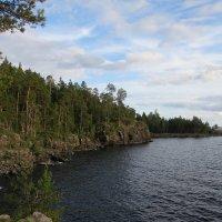 Берег острова :: Вера Щукина