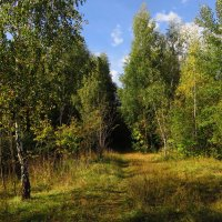 Любимое местечко :: Андрей Лукьянов