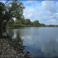 Курлацкий пруд :: Владимир Стаценко