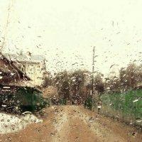 Весенний дождь :: Николай
