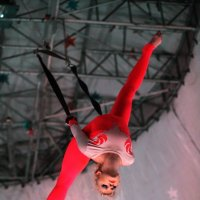 Под куполом цирка :: Анатолий Шулков