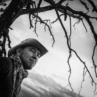 Мертвое дерево :: Мария Алешина