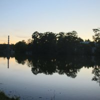 Екатерининский парк на закате :: Наталья Герасимова