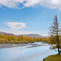 акварельная осень :: nataly-teplyakov
