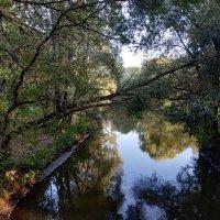 Ботанический сад :: Ольга