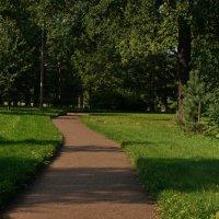 Дорожка в парк :: Владимир Гилясев