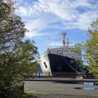 Хороший осенний денек в морском порту... :: emaslenova