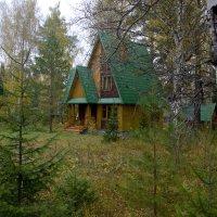 Домик в лесу :: Алексей Екимовских