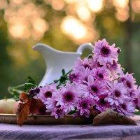 Сиреневая осень... :: Ольга Гукова (Olka-rada5)