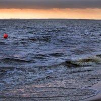 Ветреный вечер на Финском заливе :: Ирина Румянцева
