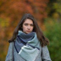 Осенний портрет. :: Дмитрий .