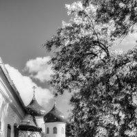 Свято Юрьев монастырь( Великий Новгород)2 :: Игорь Свет
