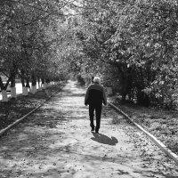 Осенние зарисовки на ретро объектив :: Владислав Левашов