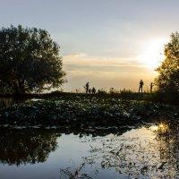 Монастырский пруд :: Диана