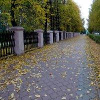 Осень пришла в город. :: Елизавета Успенская