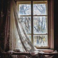 Брошенный дом, Былое! :: Ирина Антоновна