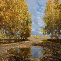 Сентябрьский пейзаж :: Алексей Мезенцев
