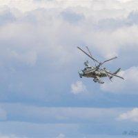 """Ка 52 """"Аллигатор"""" :: Alexey YakovLev"""