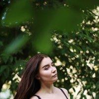 Лечащие волосы :: Екатерина Елистратова