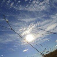 Небо над Аркаимом :: Людмила Маврина