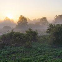 Туман :: Валерий Молоток