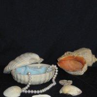 Рожденные морем :: Маера Урусова