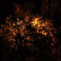 Ночное освещение :: Илья Моисеев