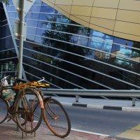 Зачем изобретать велосипед?!...лучше метро! :: Елена Творчество