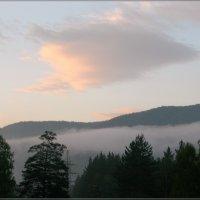 Туманное утро августа :: galina tihonova