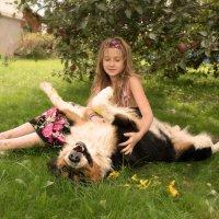 любимый пёс :: Ольга Колкота