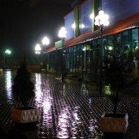 Дождь-2 :: михаил кибирев