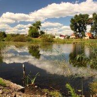 Озеро Кувшинка :: Татьяна Беляева