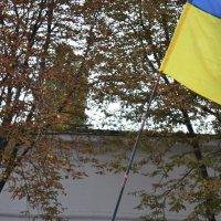 День Независимости Украины 1 :: Алена Реброва