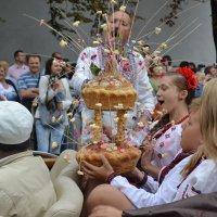 День Независимости Украины 2 :: Алена Реброва