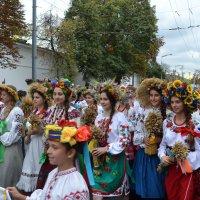 День Независимости Украины 4 :: Алена Реброва