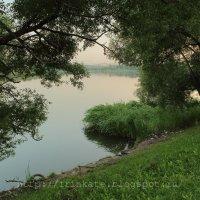 Укромный уголок у пруда :: Ирина Терентьева
