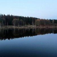 Зеркало :: РАИСА Osipova