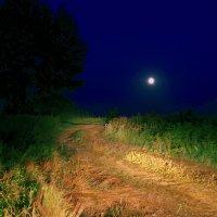 Дорога в ночи :: Сергей Толчин
