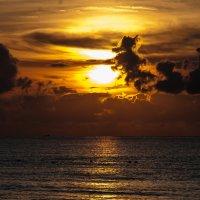 Мексика. Карибское побережье. :: igor1979 R