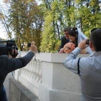 Свадьба под прицелом :: Наталья Тимошенко