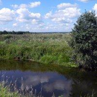 Река Вилюйка. :: Елизавета Успенская