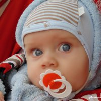 Малыш :: Anastasia Gubanova